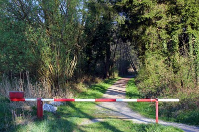 Шлагбаум в лесу