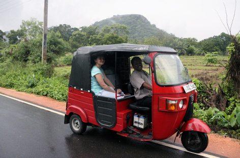 Путешествие в Шри-Ланку
