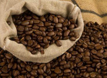 Очередной вид биотоплива: теперь из кофе