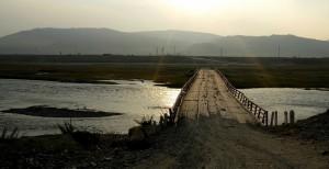 Монгольское лето