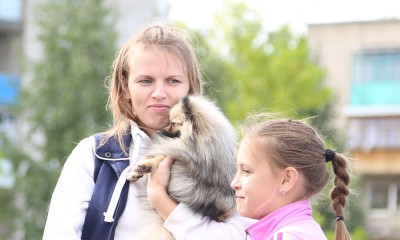 Выставка собак Royal Canin