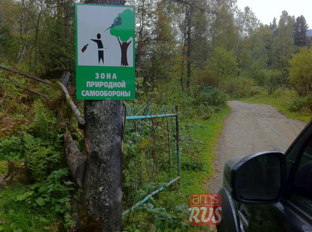 Алтайское бездорожье