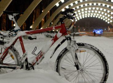Снег убил главный московский транспорт