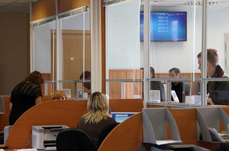 Число россиян с водительскими правами увеличилось на 10%