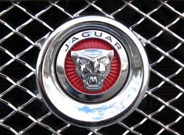 Jaguar меняет название