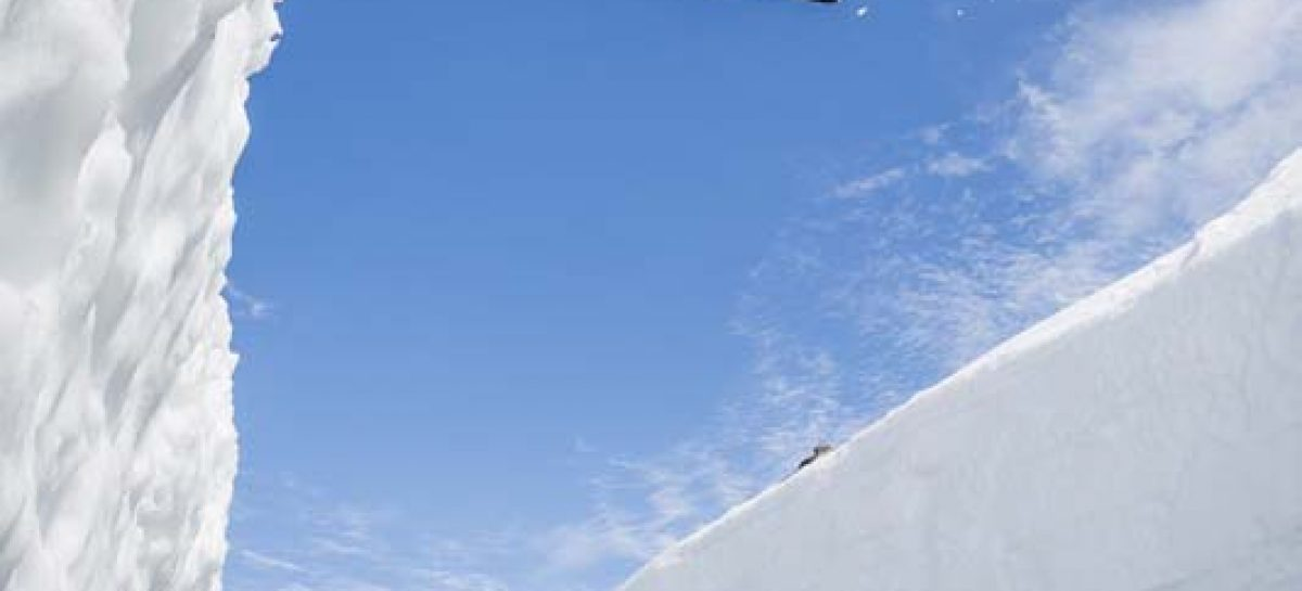 Горные лыжи против Volkswagen Polo R WRC