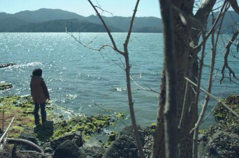 Конкурс от Lexus для молодых кинорежиссеров