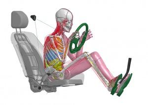 Виртуальные манекены Toyota THUMS 5