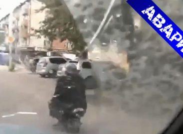 Обезьяна за рулем