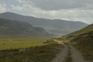 Волок-Туркестан Тосор