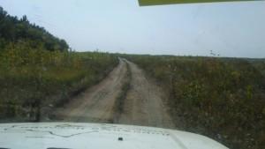 По дороге в Волгоград