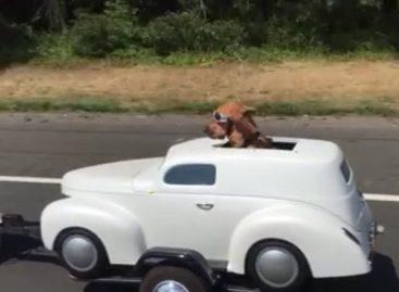 Лучший автомобиль для отпуска: выбираем