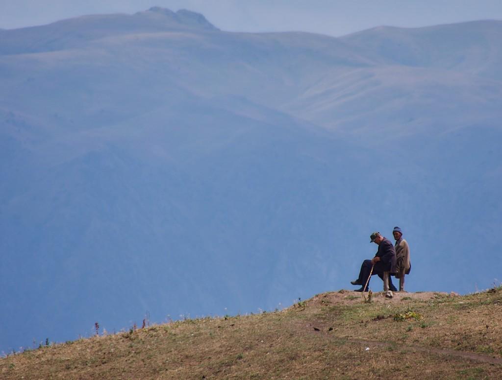 Волок Туркестан 2015