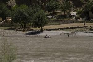 Волок Туркестан 2015 Афганистан, Пяндж