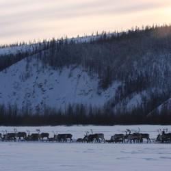 Северная автомобильная экспедиция