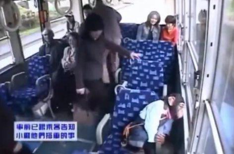 Необычный пассажир