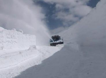 Машиномонстры. Снегогрызы
