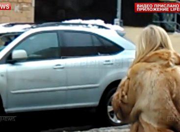 В центре столицы на Lexus упала глыба льда
