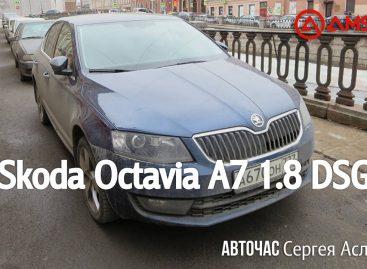 Тест-драйв Skoda Octavia A7 1.8 DSG