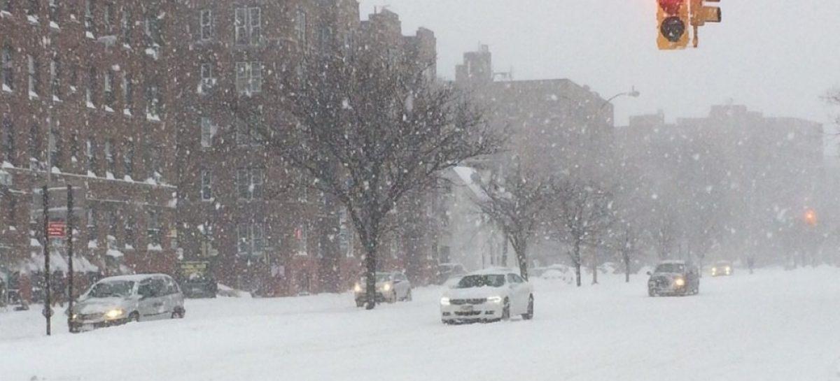 В снегопад сидите дома