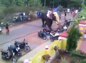 Контроль парковки