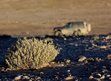Волок.Туркестан. Памирский тракт (ч.2), Тибет и Анды
