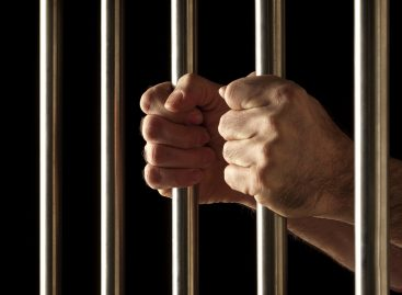 Уголовные дела по мошенничеству со страховыми выплатами возбуждают только в 14% случаев