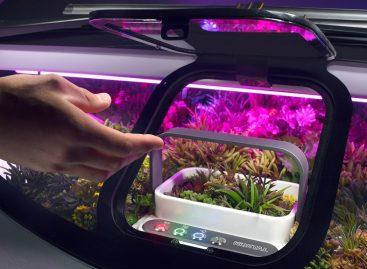 Первый в мире автомобиль-сад