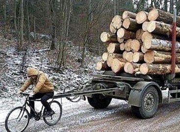 Мощнейшие тракторы лесовозы. Удивительные современные мега машины и тяжелое оборудование