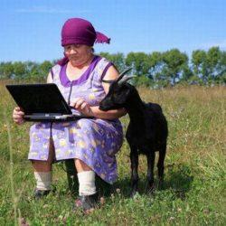 Бабушка с козой в опасности!