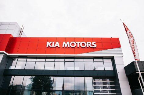 В 2016 году количество автодилеров в России снизилось на 8%