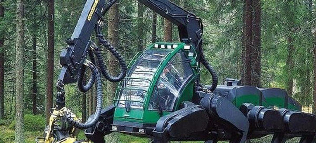 Современные лесные монстры — мега машины валят лес