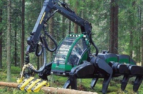 Современные лесные монстры – мега машины валят лес