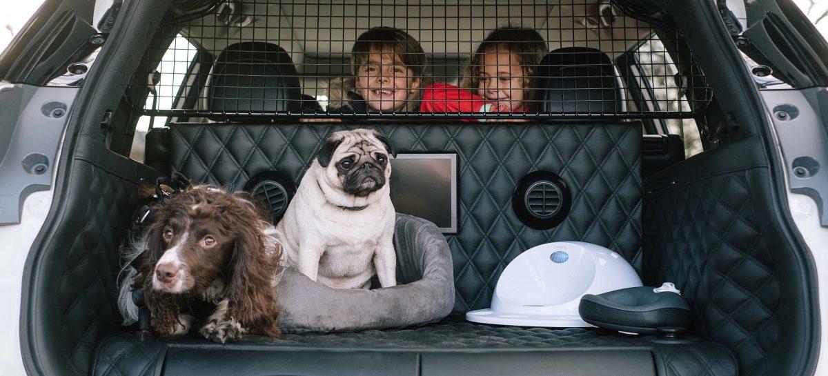 Nissan сможет напоминать водителям о забытых детях на заднем сиденье