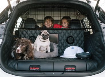 Nissan X-Trail 4Dogs: cделано для любителей животных