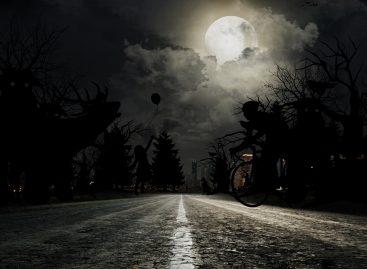 Ford умеет распознавать пешеходов ночью