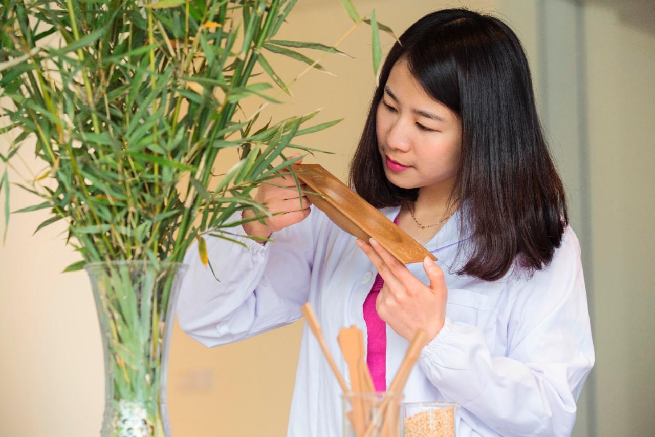 Форд планирует использовать бамбук для производства машин