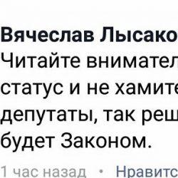 Единорос Лысаков: «Как мы, депутаты, решим - так и будет!»