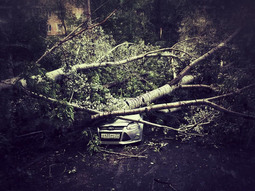 Ураган дерево упало на автомобиль