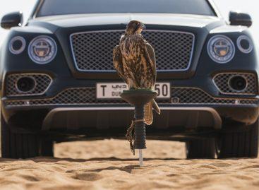 Bentley Bentayga Falconry от Mulliner: автомобиль для поклонников соколиной охоты
