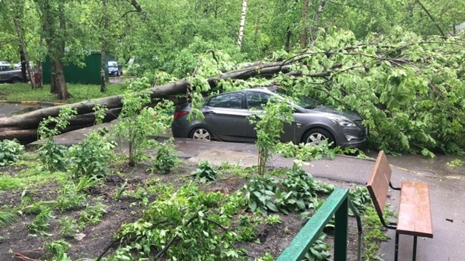 Ураган в Москве май 2017
