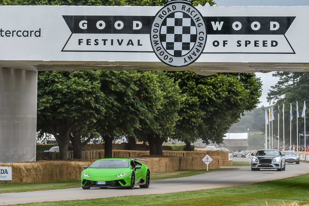 Goodwood FOS 2017-14 (1)