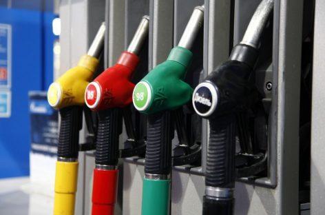 Какой тип топлива используют россияне для заправки автомобилей?
