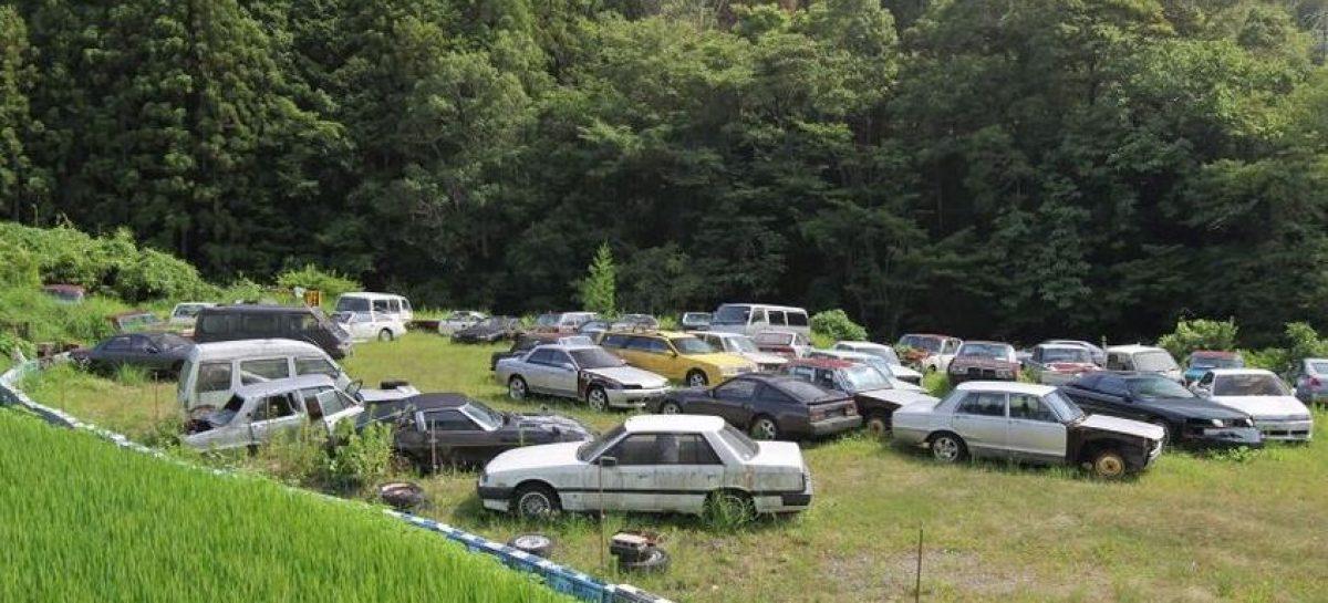 У тебя 73 автомобиля, а ты даже не в курсе!