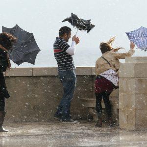 Москвич стал жертвой ураганного ветра в столице