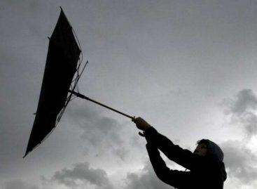 «Желтый» уровень опасности ввели в Москве из-за ветра и гололедицы