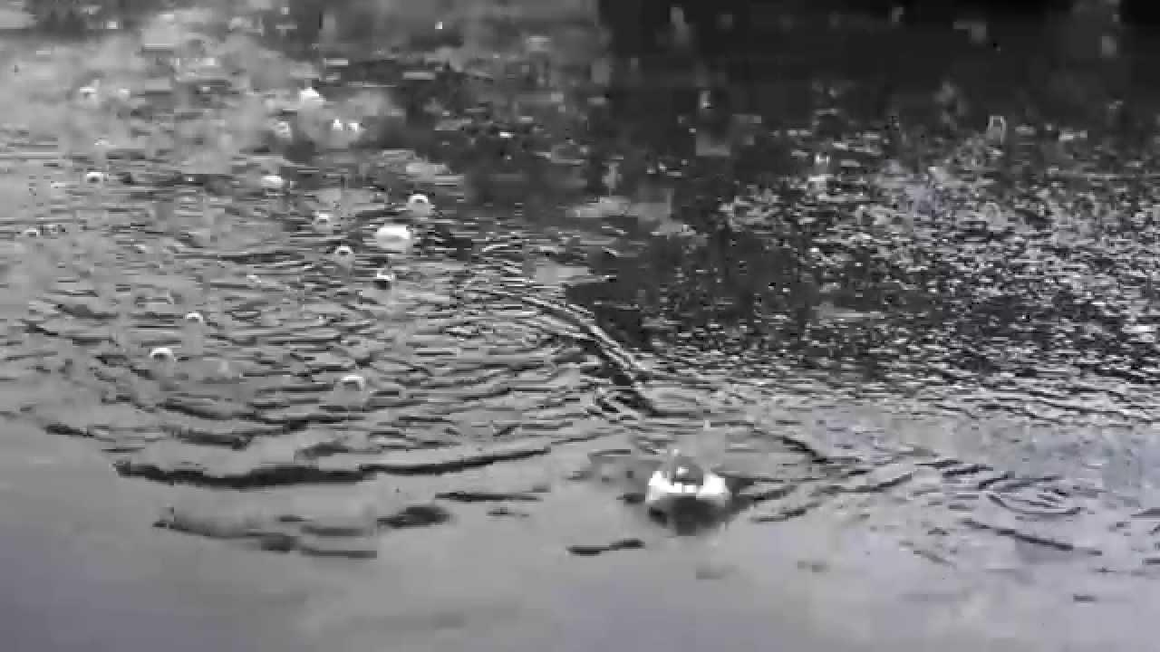 дождь, лужи
