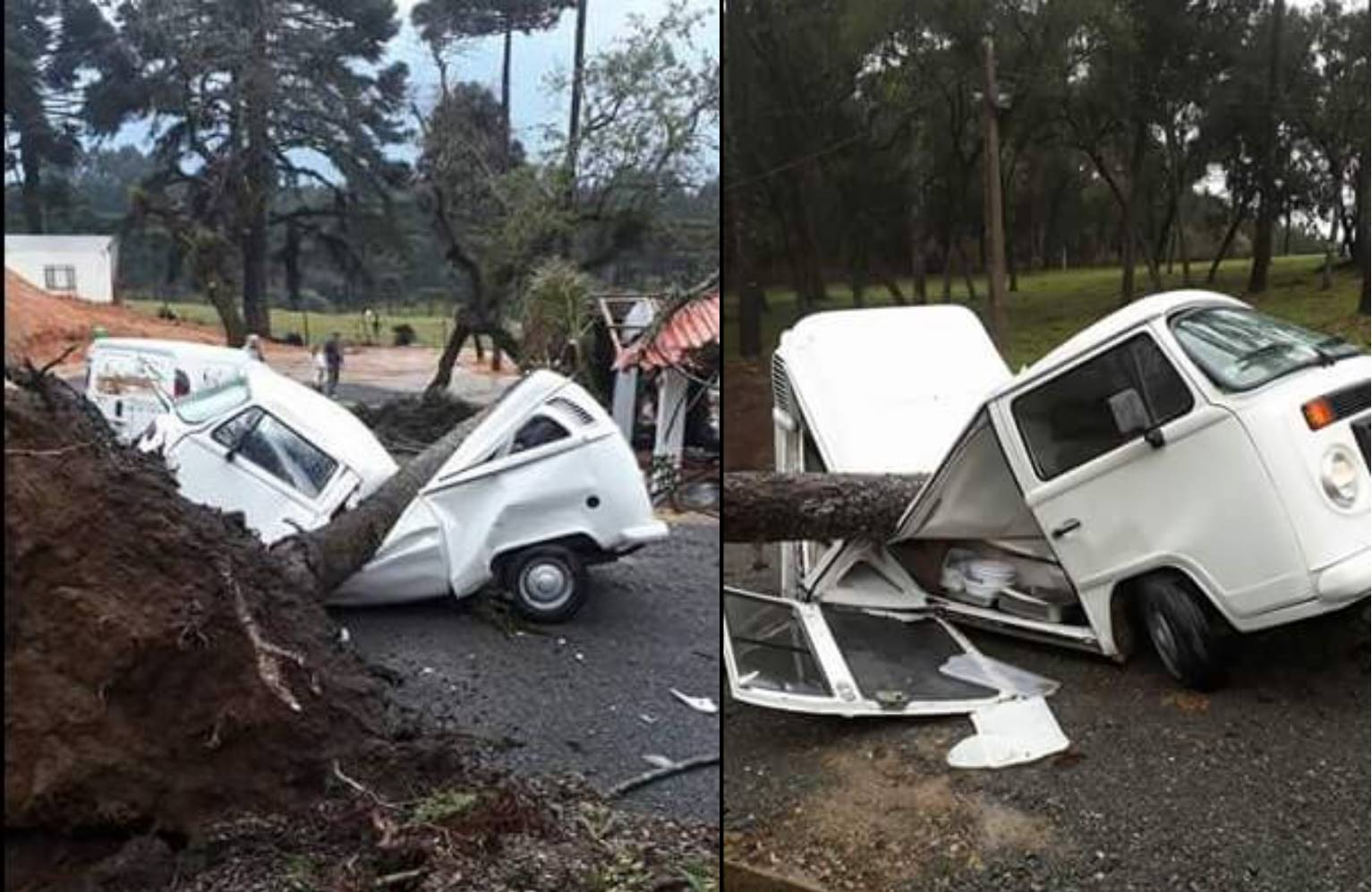 дерево упало на фургон