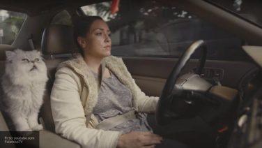 Видео о продаже подержанной машины сталo хитом сети