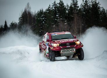 Победители Баха «Россия — Северный лес»